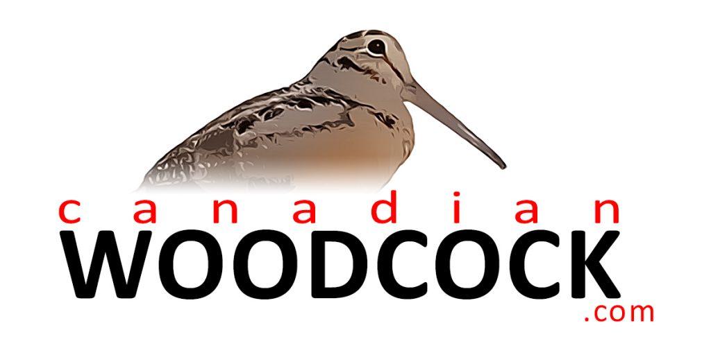 canadian woodcock